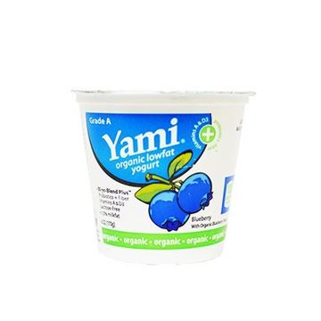 Yami Organic Blueberry Yogurt