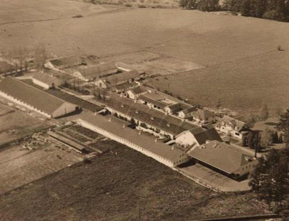 Alpenrose Dairy Farm