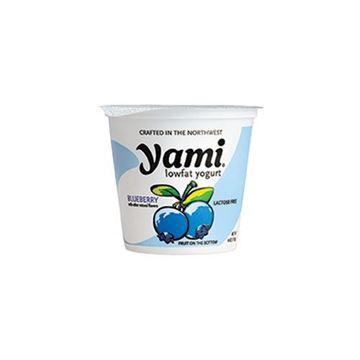 Yami Blueberry Yogurt - 6 oz.