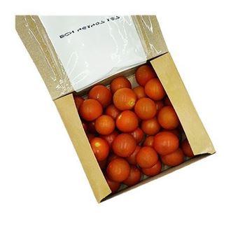 Organic Cherry Tomatoes - 1 Pint